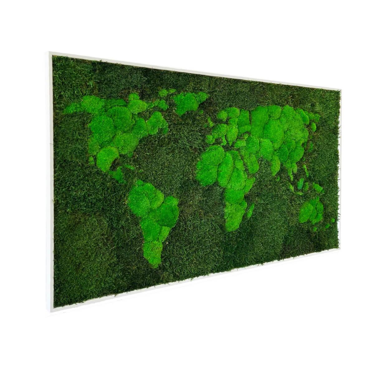 Weltkarte aus Moos - Bio Flechten